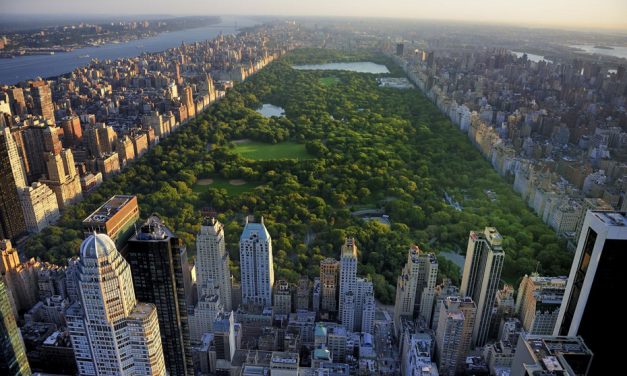 Places to Get Married in New York City – Central Park